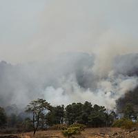 Valle de Bravo, México.- Más de mil hectáreas de bosque fueron consumidas en un incendio registrado en los límites de Valle de Bravo e Ixtapan del Oro , por más de 6 días brigadistas de PROBOSQUE, CONAFORT, elementos de la Secretaria de la Defensa Nacional y de la SSC, trabajaron para sofocar el fuego.  Agencia MVT / Crisanta Espinosa