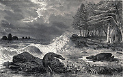 An ideal landscape of the muschelkalk sub period with reptiles sitting on stones in a stream. Wood engraving by Riou after Marand. Ideal landscape of the Middle Triassic Period, from fossils found in the German Muschelkalk deposits. Illustration from Louis Figuier's The World Before the Deluge, 1867