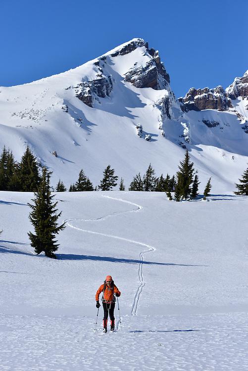 Cross country skiing through a meadow below Broken Top peak in Oregon's Cascade Range.