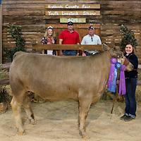 { 2019 Highlands County Fair Livestock Sale }