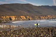 Surfer coming ashore near Big Sur, California