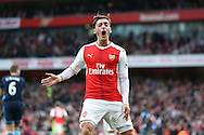 Mesut Ozil of Arsenal reacts angrily after his goal was ruled offside. Premier league match, Arsenal v Middlesbrough at the Emirates Stadium in London on Saturday 22nd October 2016.<br /> pic by John Patrick Fletcher, Andrew Orchard sports photography.