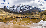 Nevado Carnicero (19,500 ft or 5960 m) reflects in a yellow stream pond near Carnicero settlement in the Cordillera Huayhuash, Andes Mountains, Peru, South America. Day 3 of 9 days trekking around the Cordillera Huayhuash. This panorama was stitched from 5 overlapping photos.