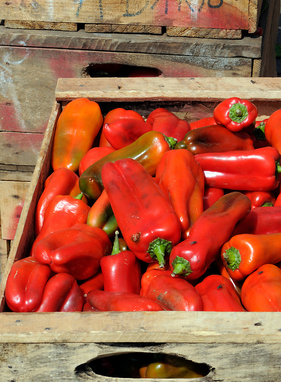 Boxes of red peppers for sale in the vegetable market in Almolonga. San Pedro de Almolonga, Republic of Guatemala. 11Mar14