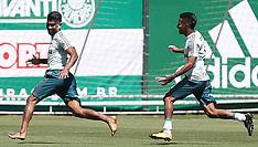 Palmeiras Training - 05 September 2017