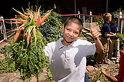 Manzo Elementary School student, Jose Nunez, 9, works in the school's organic garden, Tucson, Arizona, USA.  The school was the first in TUSD to be certified for garden to cafeteria food consumption and first in the state of Arizona for rainwater harvesting and composting. The  garden projects in the district work with internationally known Biosphere2 and the University of Arizona. The garden was built in conjunction with the National Park Foundation's First Bloom program. The project is supported in part by a USDA Farm-to-School grant.  Named Best Green School 2012 by the U.S. Green Building Council, Manzo is the only K-5 public school in the United States to receive that honor in response to their environmental initiatives.