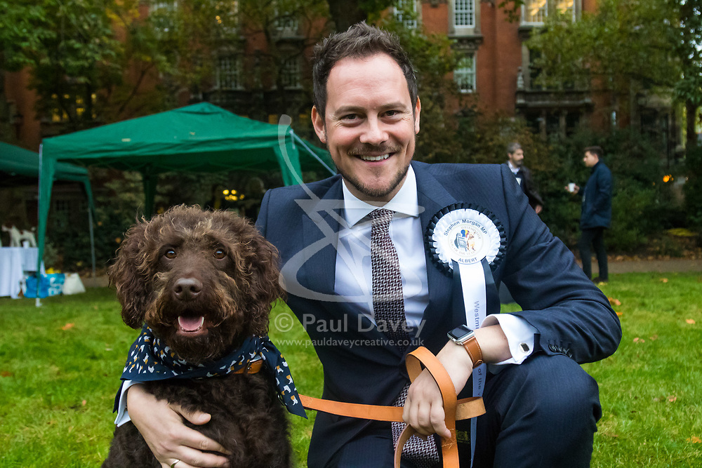 London, October 26 2017. Stephen Morgan MP (Labour Portsmouth South) with his 'Labradoodle' Albert at the annual Kennel Club and Dogs Trust Westminster Dog Of The Year competition that sees MPs and members of the House of Lords with their dogs as well as rescue dogs from the Dogs Trust. © Paul Davey