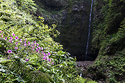 Waterfall in a giant caldera