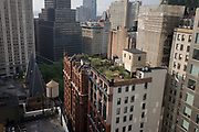 Rooftop gardens overlooking Broadway, Manhattan, New York City. Tall buildings in the background (including the Woolworth building, far left) are on Broadway - the foreground are apartments with an oasis of greenery clinging to the tops of two buildings. This cityscape is about corporate headquarters and domestic high-rise homes in one of the greatest of world cities.
