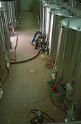 Stainless steel and concrete fermentation vats, two vineyard workers pumping over the wine (remontage), in the winery at Domaine Saint Martin de la Garrigue, Montagnac, Coteaux du Languedoc, Languedoc-Roussillon, France
