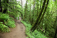 Two men trail running in Forest Park. Portland, OR