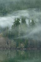 Fog over Baker Lake, North Cascades Washington