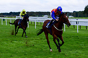 Bring The Money ridden by Tom Marquand and trained by Mick Channon ridden in the Final Furlong Podcast Novice Stakes - Mandatory by-line: Ryan Hiscott/JMP - 24/08/20 - HORSE RACING - Bath Racecourse - Bath, England - Bath Races