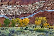 Autumn Colors at Capitol Reef National Park, Utah, USA