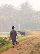 A farmer near Wayanad in Kerala, India