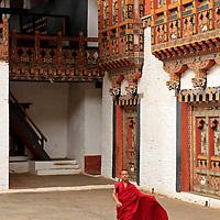 Asia, Bhutan, Punakha. Monk at Punakha Dzong.