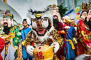 24 SEPTEMBER 2014 - BANGKOK, THAILAND: A dancer dressed as a tiger in the Vegetarian Festival Parade in Bangkok. Tigers play an important role in Taoist alchemy. Characters representing Taoist Gods lead the Vegetarian Festival Parade in Bangkok. The Vegetarian Festival is celebrated throughout Thailand. It is the Thai version of the The Nine Emperor Gods Festival, a nine-day Taoist celebration beginning on the eve of 9th lunar month of the Chinese calendar. During a period of nine days, those who are participating in the festival dress all in white and abstain from eating meat, poultry, seafood, and dairy products. Vendors and proprietors of restaurants indicate that vegetarian food is for sale by putting a yellow flag out with Thai characters for meatless written on it in red.    PHOTO BY JACK KURTZ