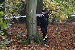 © Licensed to London News Pictures. 24/10/2020. Watlington Hill, UK. Police erect a cordon in woods at Christmas Common near Watlington Hill after the body of a woman was found on Friday 23rd October. An injured man was arrested by police near by after a man was seen acting suspiciously in nearby pub. Photo credit: Peter Macdiarmid/LNP