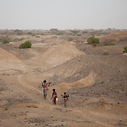 Big brother, 16 year old Muhammed and his siblings Hussein and Rabia head off to rejoin with their mother and the heard of goats. They have been to drink water and water their goats from water in a hole dug into a dried up river bed. It's dry season in Afar and water is hard to come by. Both animals and humans suffer in the dry season and travel long distances to find water and grassing.  Action for Integrated Sustainable Development Association (AISDA) work in the AFAR region of Eastern Ethiopia, based in Delafagi. The Afars practise an old tradition of Female Genital Mutilation where the baby girls has her clitoris and labia cut away and her vagina sewn up. The day before her wedding day the girl is un-stiched ready for marriage. Its a brutal and barbaric tradition which AISDA is challenging with great effect, now more than a hundred girls in Dowe district have been saved from the knife and AISDA is now rolling out the scheme in Delafagi. Delafagi is where the oldest ever human remains have been found, the found is thought to be 4.5 mill years old. with their mother and the heard of goats. They have been to drink water and water their goats from water in a hole dug into a dried up river bed. It's dry season in Afar and water is hard to come by. Both animals and humans suffer in the dry season and travel long distances to find water and grassing.  Action for Integrated Sustainable Development Association (AISDA) work in the AFAR region of Eastern Ethiopia, based in Delafagi. The Afars practise an old tradition of Female Genital Mutilation where the baby girls has her clitoris and labia cut away and her vagina sewn up. The day before her wedding day the girl is un-stiched ready for marriage. Its a brutal and barbaric tradition which AISDA is challenging with great effect, now more than a hundred girls in Dowe district have been saved from the knife and AISDA is now rolling out the scheme in Delafagi. Delafagi is where the oldest ever human remains have been found, t
