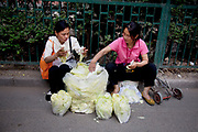 Women selling Chinese leaf cabbages in a street market in an old Chinese style area of Fuchengmen, in the Xicheng district of Beijing, China. This neighbourhood, tucked away behind a major road had people selling food in the street as well as in a covered market.