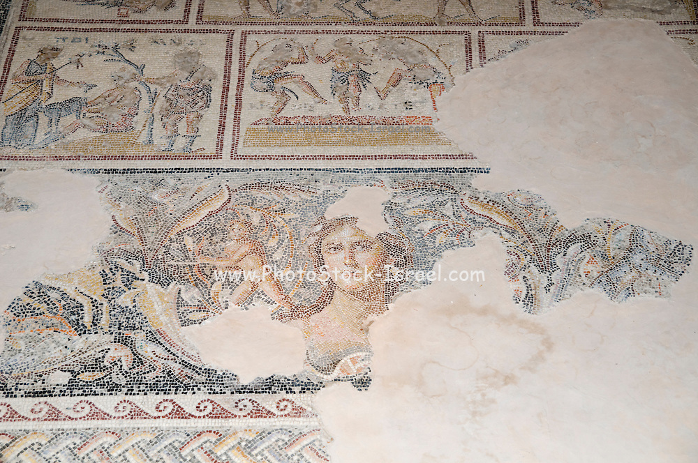 "Dionysus Mosaic, Mosaic floor of the roman villa The ""Mona Lisa of the Galilee"". Israel, Lower Galilee, Zippori National Park The city of Zippori (Sepphoris) A Roman Byzantine period city with an abundance of mosaics"