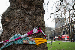 London, UK. 13th January, 2018. A tree in Euston Square Gardens is wrapped with a hand-knitted scarf. Activists opposed to the HS2 high-speed rail link have 'yarn-bombed' many of the mature London Plane, Red Oak, Common Whitebeam, Common Lime and Wild Service trees in Euston Square Gardens expected to be felled to make way for temporary sites for construction vehicles and a displaced taxi rank as part of preparations for the controversial HS2 project in order to draw attention to their fate.