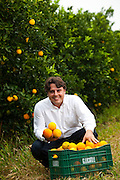Madre de Deus de Minas_MG, Brasil...Retrato do produtor de laranjas em uma de suas propriedades produtoras em Madre de Deus de Minas, Minas Gerais...A farmer portrait in His farm, He produces oranges in His farm in Madre Deus de Minas, Minas Gerais...Foto: BRUNO MAGALHAES / NITRO