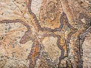 Rock pattern, in Rio Achin Valley. Geology: Cordillera Huayhuash is comprised of uplifted sedimentary sea floor rocks (quartzite, limestone, slate) with a base of granodiorite. Day 9 of 9 days trekking around the Cordillera Huayhuash in the Andes Mountains, near LLamac, Peru, South America.