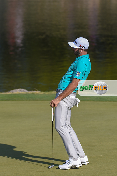 Dustin Johnson (USA) reacts to barely missing his birdie putt on 11 during day 1 of the WGC Dell Match Play, at the Austin Country Club, Austin, Texas, USA. 3/27/2019.<br /> Picture: Golffile | Ken Murray<br /> <br /> <br /> All photo usage must carry mandatory copyright credit (© Golffile | Ken Murray)