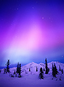 Blue, violet, red and green aurora at dawn above the Talkeetna Mountains east of Cantwell, Geomagnetic Storm on January 17, 2005, Alaska.