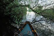 Boat ride in the delta jungle, Danube delta rewilding area, Romania