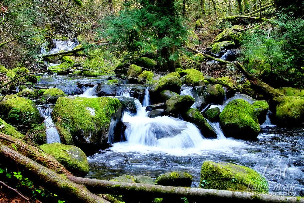 Multnomah creek just above famous Multnomah Falls