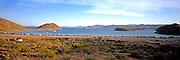 MEXICO, BAJA CALIFORNIA Bahia de Concepcion on the Sea of Cortez
