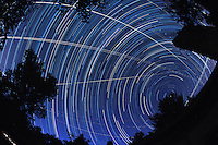 North View Star Trails. Summer Night in New Jersey. Image taken with a Nikon D3s and 16 mm f/2.8 mm Fisheye lens (ISO 800, 16 mm, f/5.6, 30 sec). Composite of 326 images combined using the Startrails program.