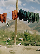 A carpet factory. People and places of the Hunza Valley, in the heart of the Karakoram mountain Range, North Pakistan.