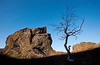 Iceland; Jokulsargljufur; Thingeyjarsyslur