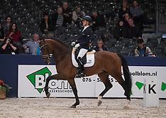 Finale hengstencompetitie Gelders Paard - KWPN 2017