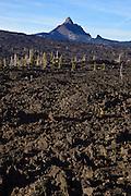 USA, Oregon, Mt. McKenzie Pass Scenic Byway, lava, and Mt. Washington.