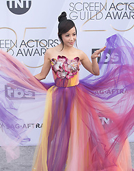 January 27, 2019 - Los Angeles, California, U.S - Fiona Xie at the red carpet of the 25th Annual Screen Actors Guild Awards held at the Shrine Auditorium in Los Angeles, California, Sunday January 27, 2019. (Credit Image: © Prensa Internacional via ZUMA Wire)
