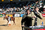 Polo pony auction, Palermo, Buenos Aires