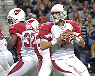 Arizona Cardinals quarterback Matt Leinart (7)drops back to pass against St. Louis, during action at the Edward Jones Dome in St. Louis, Missouri, December 3, 2006.  The Cardinals beat the Rams 34-20.<br />