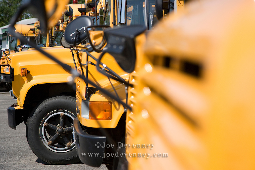 Several school buses in a parking lot