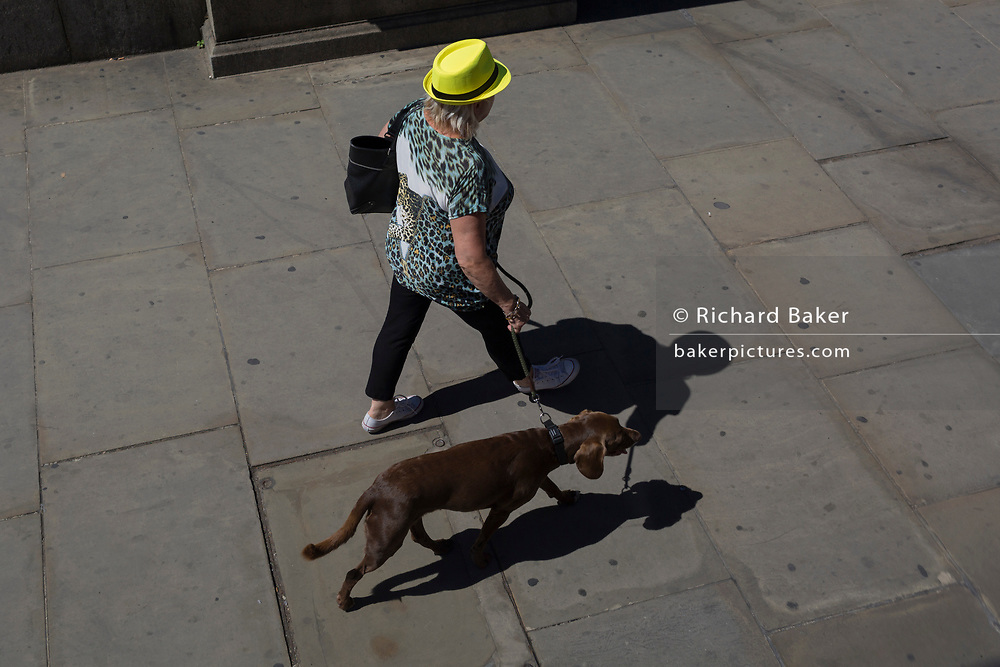 A lady walks her dog over London Bridge in the City of London, the capital's historic financial district, on 2nd August 2018, in London, England.