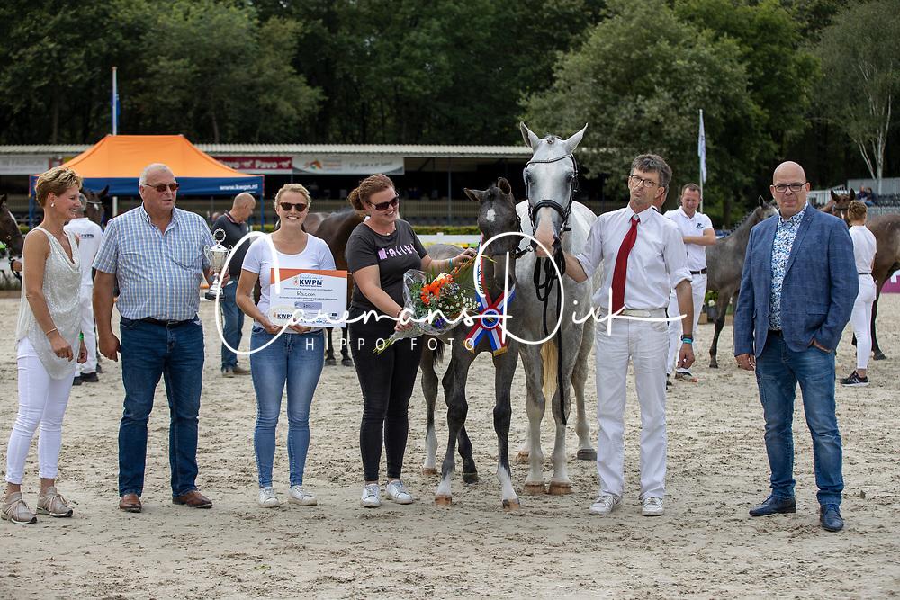 002, Racoon W<br /> KWPN Kampioenschappen 2021<br /> Ermelo <br /> © Hippo Foto - Dirk Caremans<br /> 13/08/2021