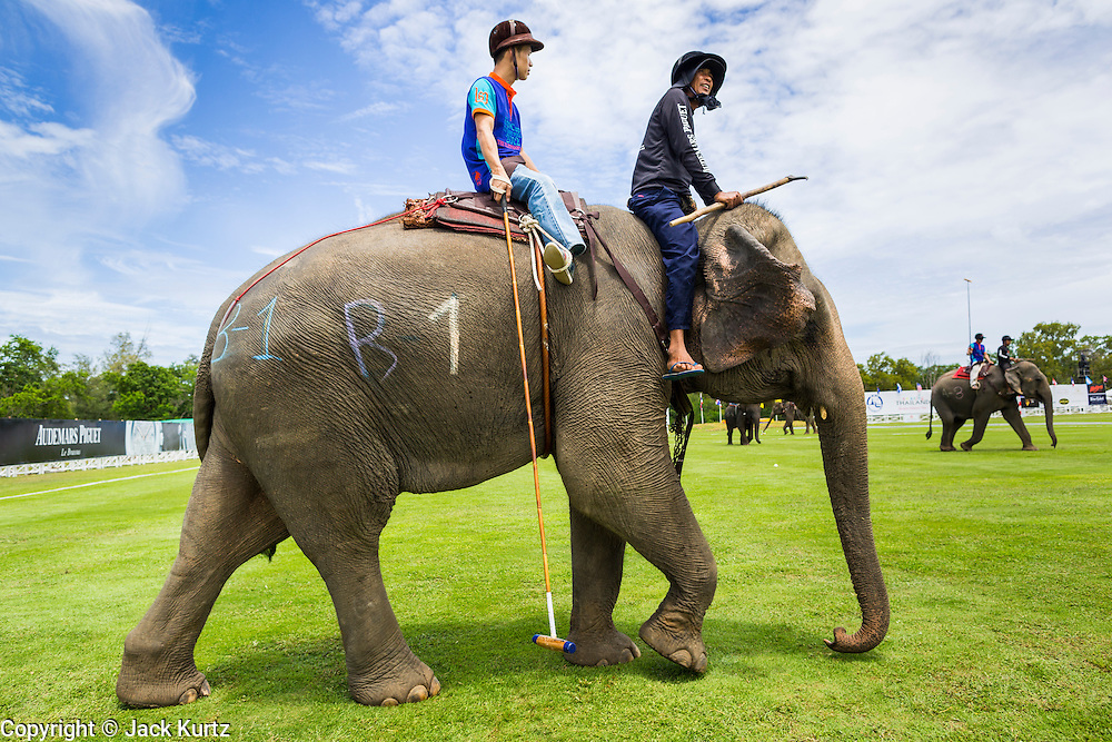 "28 AUGUST 2013 - HUA HIN, PRACHUAP KHIRI KHAN, THAILAND:  A mahout, elephant and polo player enter the field at the King's Cup Elephant Polo Tournament in Hua Hin, Thailand. The tournament's primary sponsor in Anantara Resorts and the tournament is hosted by Anantara Hua Hin. This is the 12th year for the King's Cup Elephant Polo Tournament. The sport of elephant polo started in Nepal in 1982. Proceeds from the King's Cup tournament goes to help rehabilitate elephants rescued from abuse. Each team has three players and three elephants. Matches take place on a pitch (field) 80 meters by 48 meters using standard polo balls. The game is divided into two 7 minute ""chukkas"" or halves. There are 16 teams in this year's tournament, including one team of transgendered ""ladyboys.""    PHOTO BY JACK KURTZ"