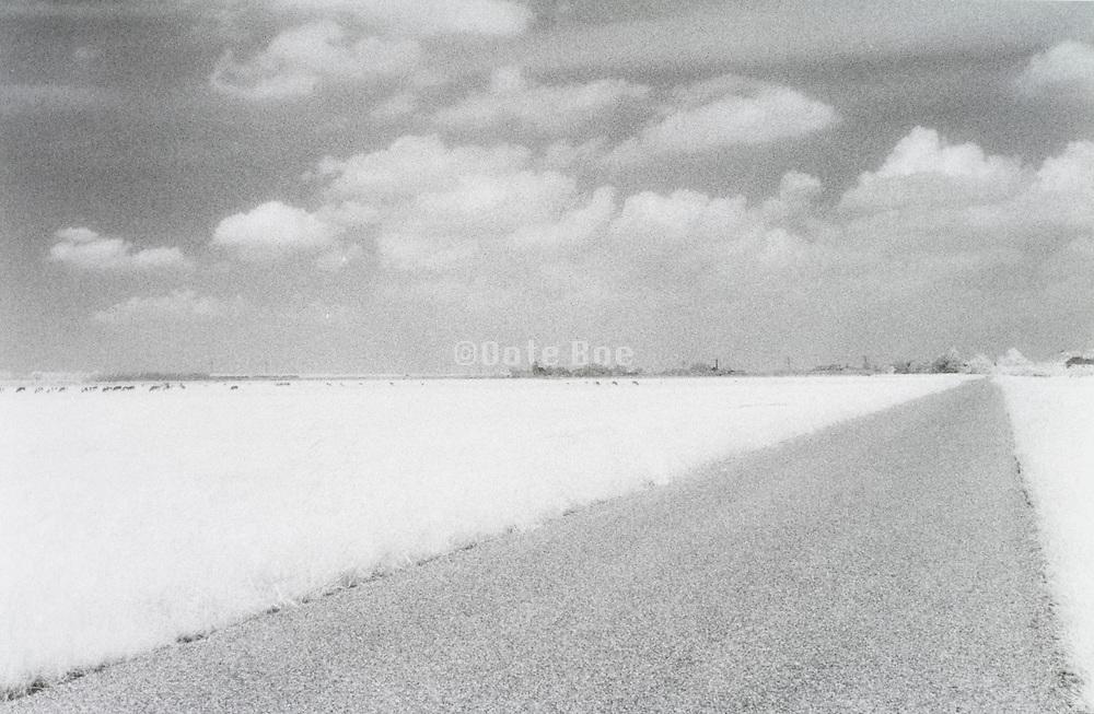 small road vanishing towards the horizon Holland