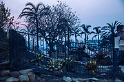 12082017 - Ventura, California USA:  Homes sit destroyed after the Thomas Fire burned through the Colina Vista neighborhood of Ventura, California. (Photo by Jeremy Hogan) ©2017 All rights reserved