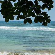 Central America, Centro America, Latin America, Latin, tropical, Costa Rica, Puerto Viejo, Caribbean, Manzanillo Wildlife Refuge, Manzanillo, Secluded and inviting beach in the Manzanillo Wildlife Refuge, Costa Rica.