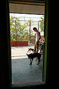 Aniplant caretaker Enrique watches over several rescued dogs on the patio area. Aniplant, Cuba.