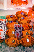 Seafood Market, Sapporo, Hokkaido, Japan